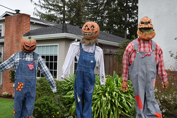 Halloween2016-17
